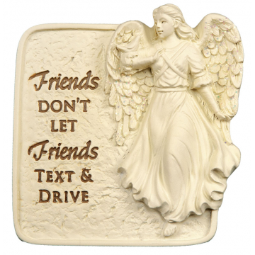 Friends Don't Let Friends Resin Visor Clip