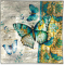 """Radiant Butterfly 8"""" Square Plate"""