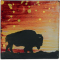 """Sunset Buffalo 4"""" Cozenza Glass Coaster Set"""